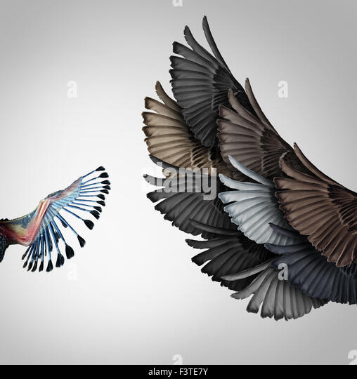 Early education support and guidance concept as a baby wing being guided by a group of adult wings from diverse - Stock Image