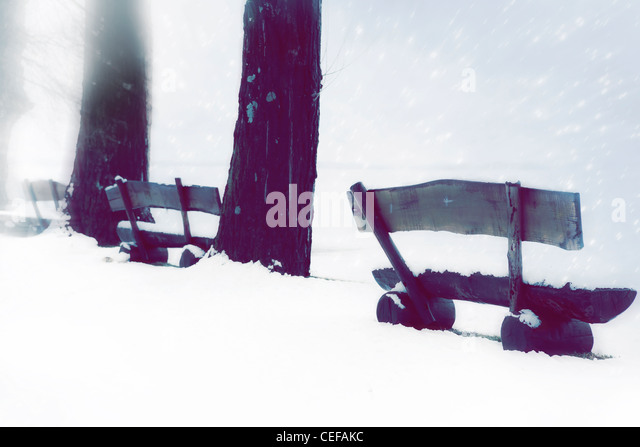 Wooden benches in the snow while it's snowing - Stock Image