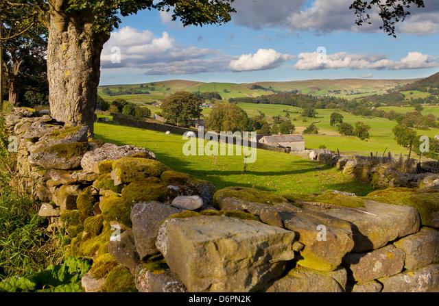 Farm near Burnsall, Yorkshire Dales National Park, Yorkshire, England, United Kingdom, Europe - Stock Image