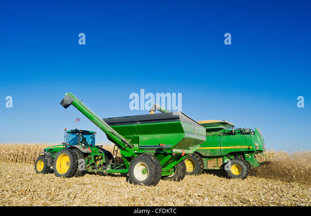 A combine empties into a grain wagon on the go during the feed corn harvest, near Niverville, Manitoba, Canada - Stock-Bilder