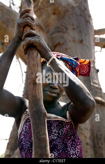 Woman pounding millet, sorgoum. Senegal - Stock Image