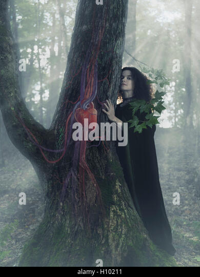 Woman druid in the forest listening to the heartbeat of a tree, artistic conceptual photo illustration. - Stock Image