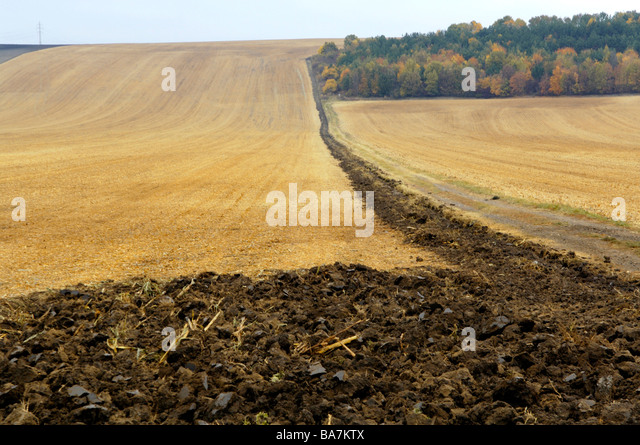 Fields, Slavkov, Austerlitz, Czech Republic - Stock Image