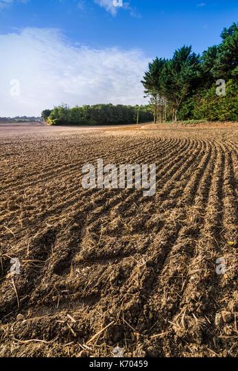 Newly harrowed farm field, France. - Stock Image