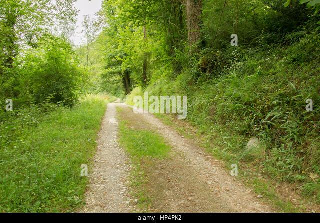 Roncesvalles pyrenees navarra spain stock photos - St jean pied de port to santiago distance ...