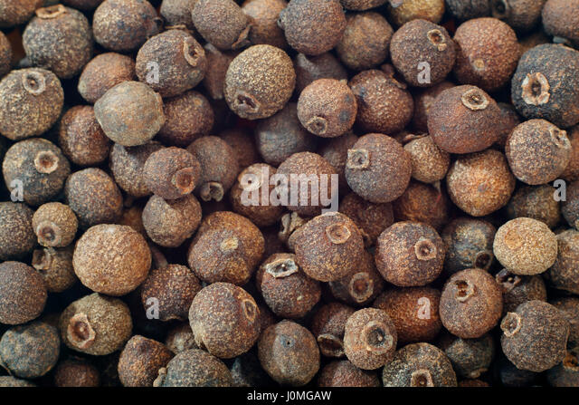 Allspice (Pimenta dioica) berries close up. Full frame shoot. - Stock Image