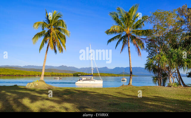 Palm trees in Rex Smeal Park with boats on Dickson Inlet. Port Douglas, Queensland, Australia. - Stock Image