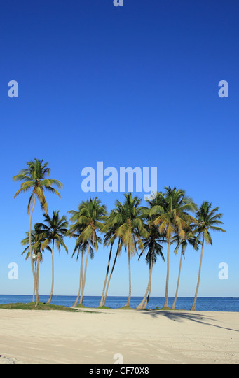Cap Cana beach - Stock Image
