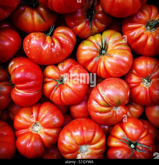 Fresh tomatoes for sale a fresh food market - Stock-Bilder