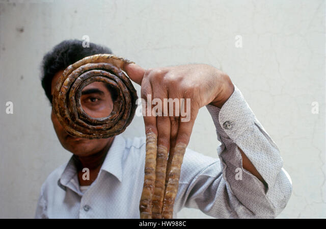 longest finger nails world record India - Stock-Bilder