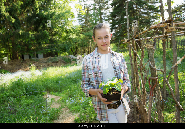 A girl in a checked shirt holding a plant with bright green leaves in a plant pot. An fenced off enclosure. - Stock Image