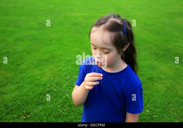 Little girl blowing dandelion - Stock Image