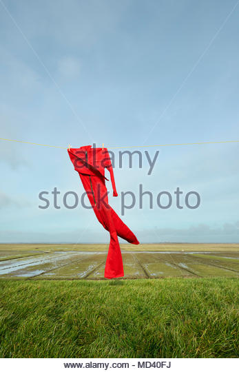 Overall on washing line, blowing in the wind, on top of the dyke besides the Waddensea, Holwerd, Friesland, Netherlands - Stock Image