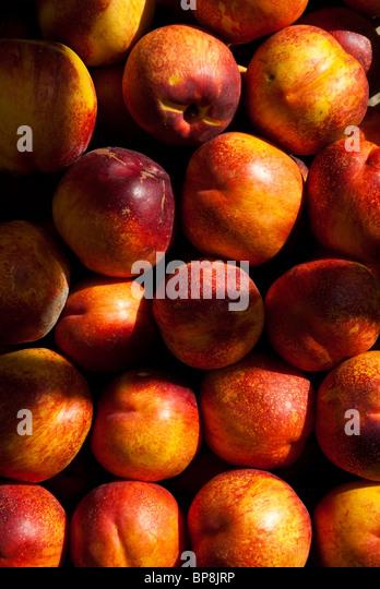 Peaches Prunus persica on sale market Beirut Lebanon Middle East - Stock Image