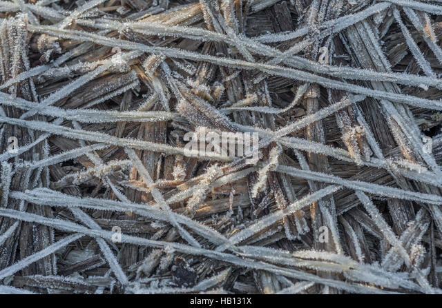 Frost crystals on straw bale binder webbing. - Stock Image