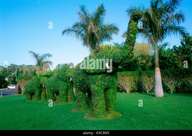 Elephant figures at Loro park Amusement park Tenerife island canaria canary islands Spain - Stock Image