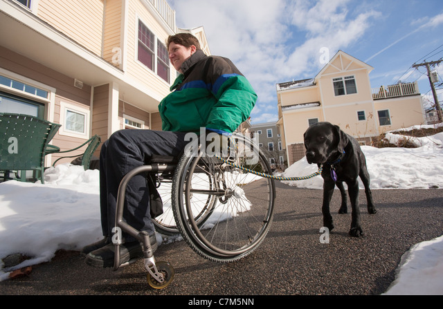Woman with multiple sclerosis in a wheelchair with a service dog - Stock Image