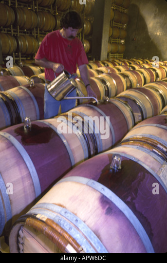 Washington Northwest Paterson Columbia Crest Winery Bordeaux red barrel cellar Columbia Snake River Cruise - Stock Image