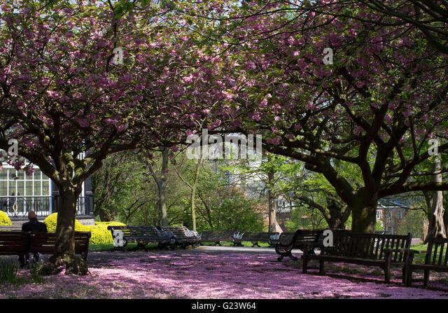 The gardens at Nottingham Castle in Nottingham. - Stock Image