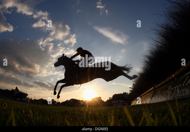 Hannover, Germany, silhouette, horse and jockey jumping over a hurdle - Stock Image