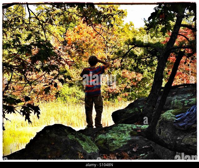 Teen boy looks out on fall landscape. Fall foliage, New England. CT, USA - Stock Image