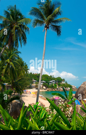 Coral Cove, Ko Samui, Thailand - Stock-Bilder