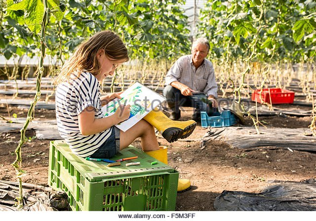 Girl sitting on crate drawing while grandfather works - Stock-Bilder