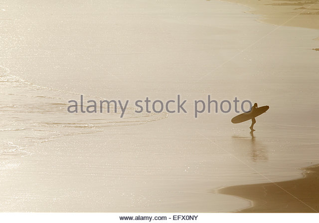 Surfer carrying surf board, walking along beach from sea - Stock Image