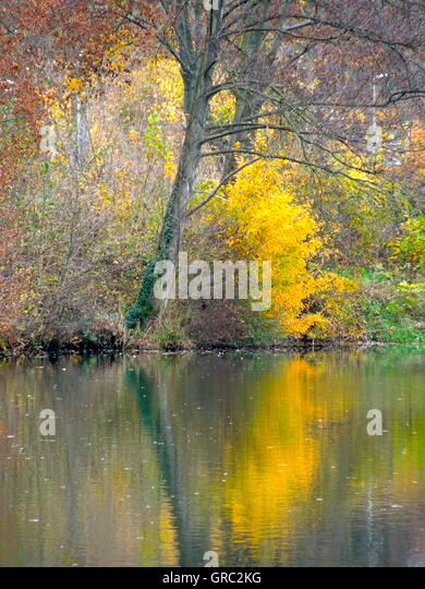 Impressionist Fotography The Colours Of Autumn At The Lakeside - Stock Image