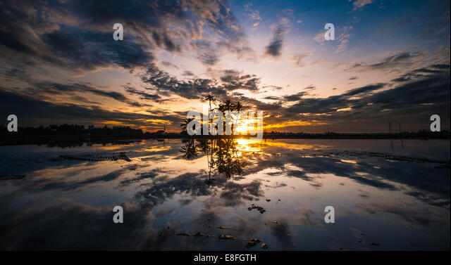 Malaysia, Penang Island, Juru, Kepala Batas, Penaga, Sunset reflecting in water - Stock Image