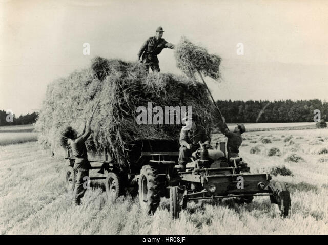 Soldiers helping the late harvest, Lower Saxony, Germany 1962 - Stock Image