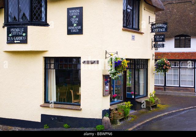Tea Rooms Lulworth