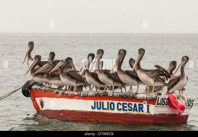 Fishing boats in Los Organos village near Mancora, Peru, South America - Stock Image