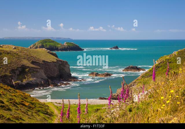 Solva, Pembrokeshire, Wales, United Kingdom, Europe - Stock Image