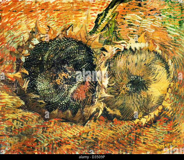 van gogh sunflowers stock photos van gogh sunflowers stock images alamy. Black Bedroom Furniture Sets. Home Design Ideas