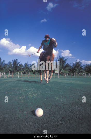 Jamaica Chukka Cove polo match action mallet horses - Stock Image