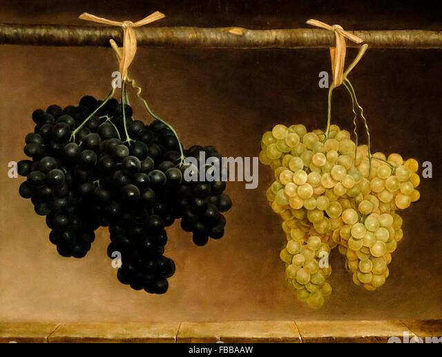 Green and Concord Grapes - Van Doorn - circa 1850 - Stock-Bilder