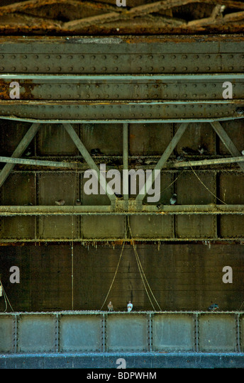 Iron girders under a railway bridge with pidgeons - Stock-Bilder
