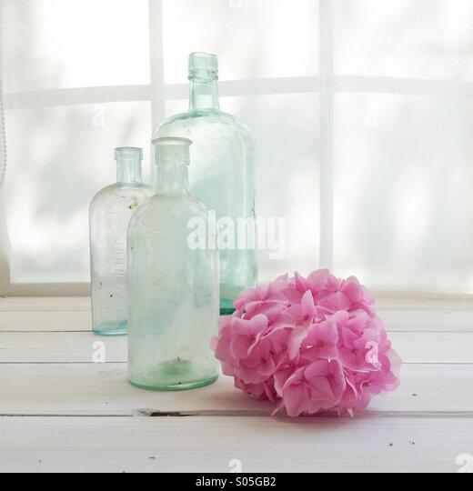 Vintage glass bottles with pink hydrangea on window sill bathed with light - Stock Image