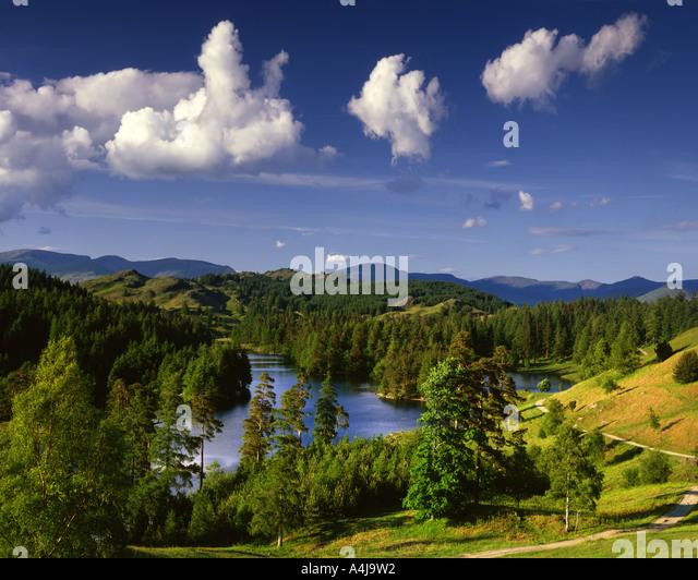 GB - CUMBRIA: Tarn Hows in den Lake District National Park Stockbild