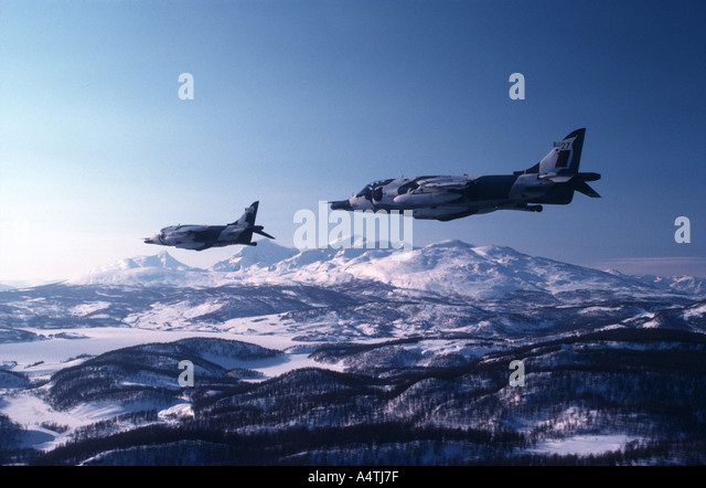 RAF Harriers im Schnee Tarnung Stockbild
