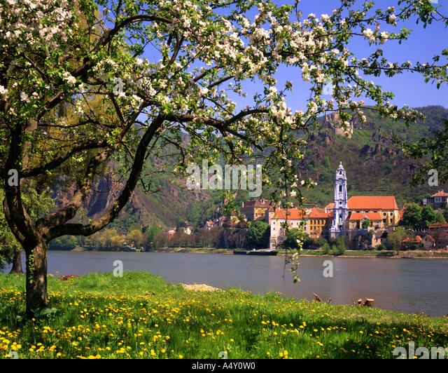 AT - Niederösterreich: Dürnstein und Donau Stockbild
