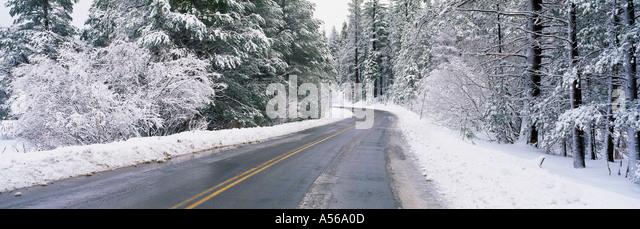 Straße durch den verschneiten Wald Stockbild