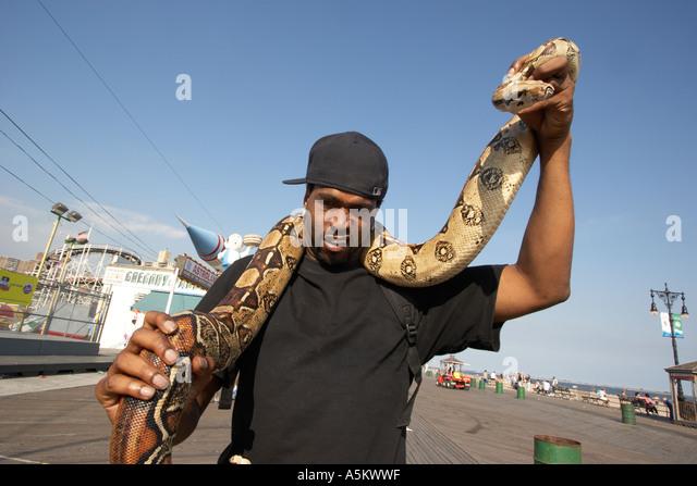 Mann mit Haustier Python auf der Promenade in Coney Island Stockbild