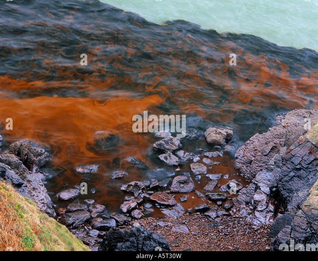 Meer Kaiserin Öl Katastrophe Pembrokeshire Wales Stockbild