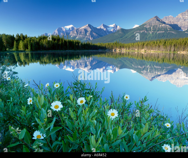 Herbert See Banff National Pak kanadischen Rocky Mountains, Kanada Stockbild