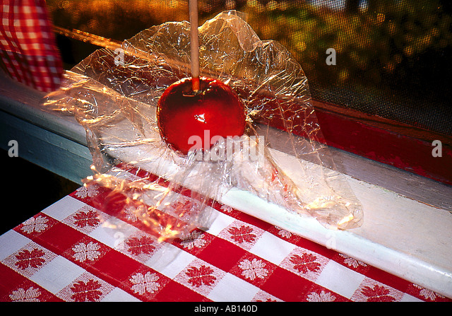 Liebesapfel sitzt auf der Fensterbank Stockbild