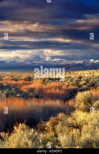 Sonnenaufgang auf der Pueblo-Mountaions mit frischem Schnee Oregon - Stock-Bilder