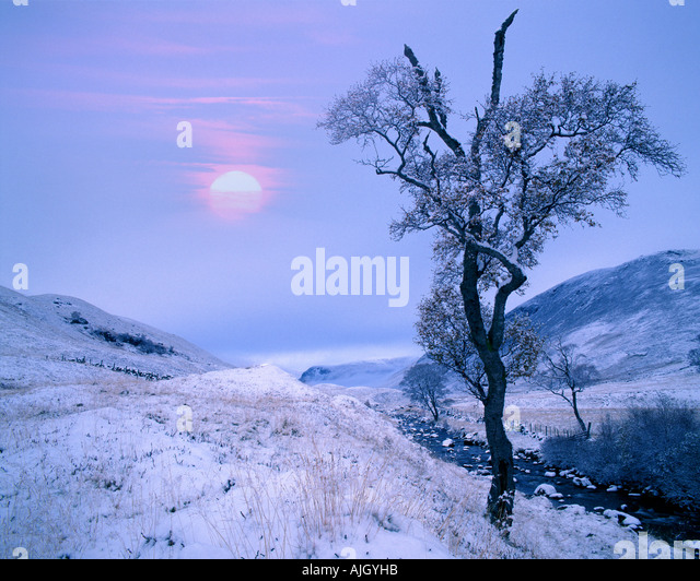 GB - Schottland: Winter in Glen Lochsie in Tayside Stockbild