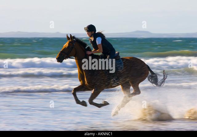 Junge Frau reitet auf einem Pferd Bucht auf breiten Haven Beach Pembrokeshire Wales Großbritannien Stockbild